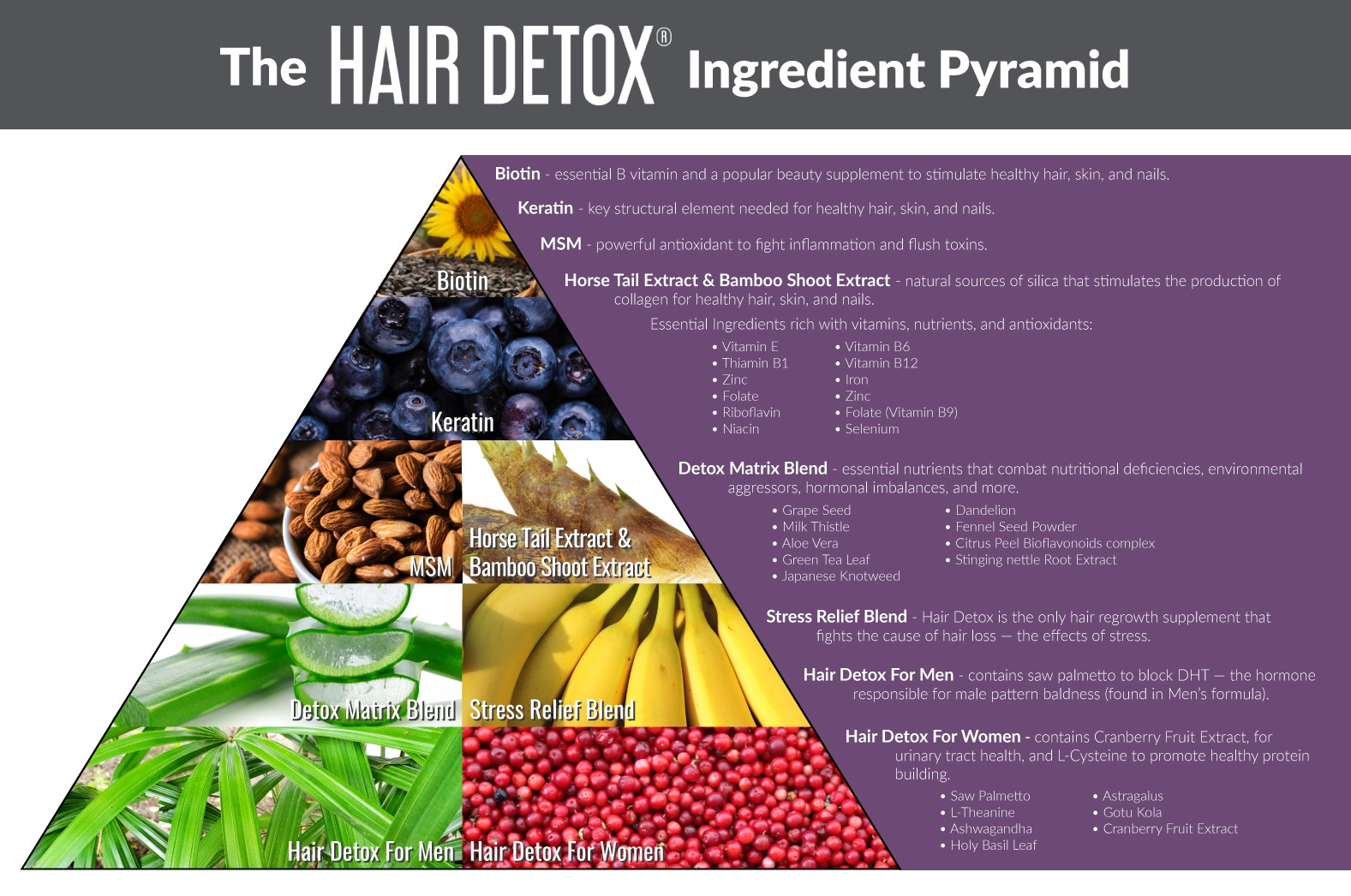 Hair-Detox-Pyramid-rev-1
